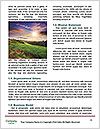 0000091132 Word Template - Page 4