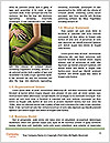 0000091135 Word Templates - Page 4