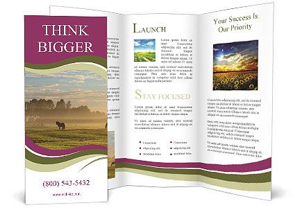 0000091139 Brochure Template