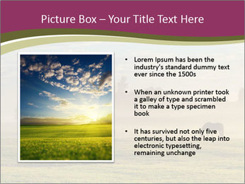 Holland Landscape PowerPoint Templates - Slide 13
