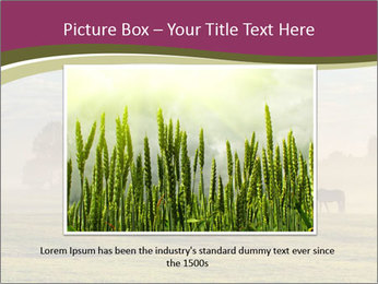 Holland Landscape PowerPoint Template - Slide 16