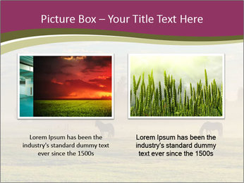 Holland Landscape PowerPoint Templates - Slide 18