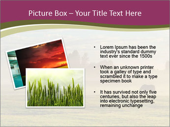 Holland Landscape PowerPoint Template - Slide 20