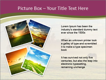 Holland Landscape PowerPoint Templates - Slide 23