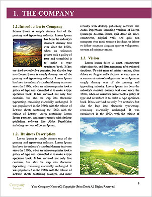 0000091139 Word Template - Page 3