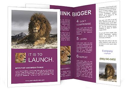 0000091140 Brochure Templates