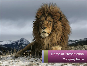 Lonely Lion PowerPoint Template - Slide 1