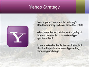 Lonely Lion PowerPoint Template - Slide 11