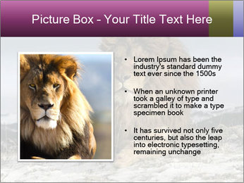 Lonely Lion PowerPoint Template - Slide 13