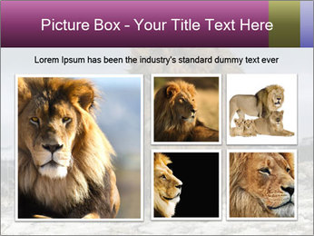 Lonely Lion PowerPoint Template - Slide 19