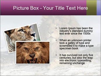 Lonely Lion PowerPoint Template - Slide 20