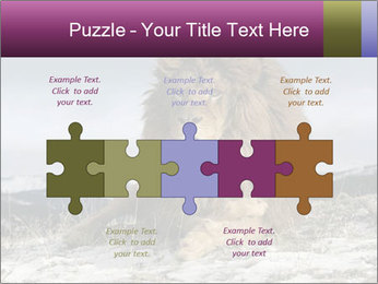 Lonely Lion PowerPoint Template - Slide 41