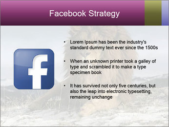 Lonely Lion PowerPoint Templates - Slide 6