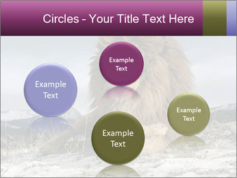 Lonely Lion PowerPoint Templates - Slide 77