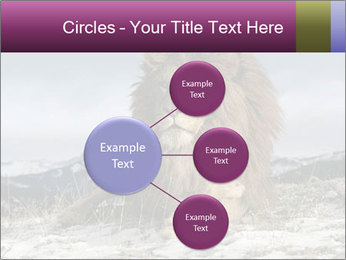 Lonely Lion PowerPoint Templates - Slide 79