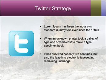 Lonely Lion PowerPoint Templates - Slide 9