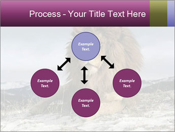 Lonely Lion PowerPoint Template - Slide 91