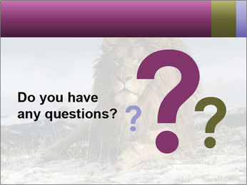 Lonely Lion PowerPoint Template - Slide 96