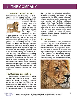 0000091140 Word Template - Page 3