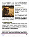 0000091140 Word Templates - Page 4