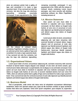 0000091140 Word Template - Page 4