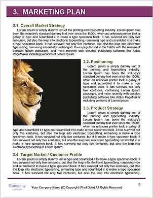 0000091140 Word Template - Page 8