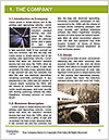 0000091141 Word Templates - Page 3