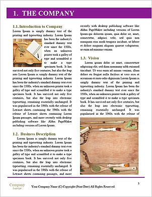 0000091143 Word Template - Page 3
