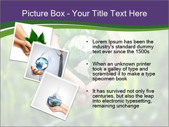 Take Care About Earth PowerPoint Template - Slide 17
