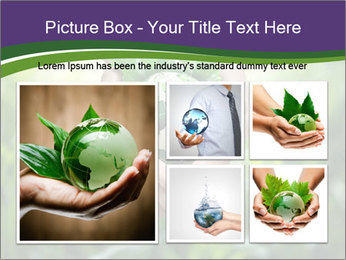 Take Care About Earth PowerPoint Template - Slide 19