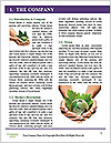 0000091146 Word Templates - Page 3