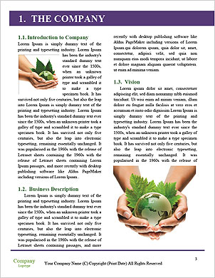 0000091146 Word Template - Page 3