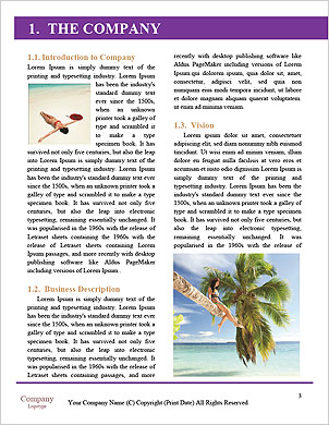0000091147 Word Template - Page 3