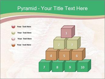 Fish Fillet PowerPoint Templates - Slide 31