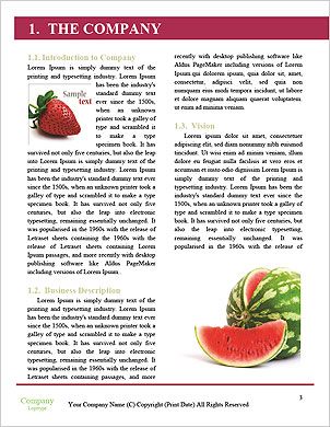 0000091152 Word Template - Page 3