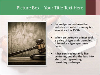 Justice Case PowerPoint Template - Slide 13