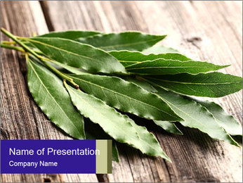 Aromatic Herb PowerPoint Template - Slide 1