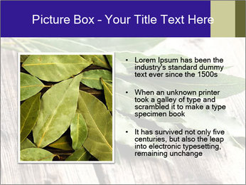 Aromatic Herb PowerPoint Template - Slide 13