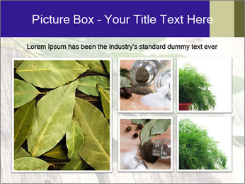 Aromatic Herb PowerPoint Template - Slide 19