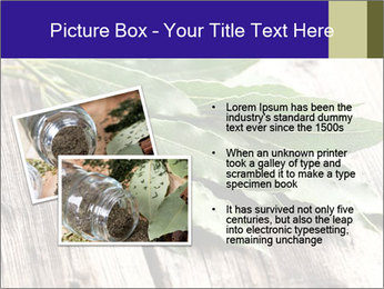 Aromatic Herb PowerPoint Template - Slide 20