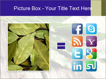 Aromatic Herb PowerPoint Template - Slide 21