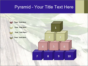 Aromatic Herb PowerPoint Template - Slide 31
