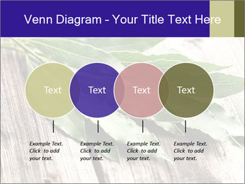 Aromatic Herb PowerPoint Template - Slide 32
