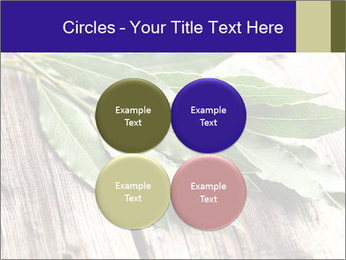 Aromatic Herb PowerPoint Template - Slide 38