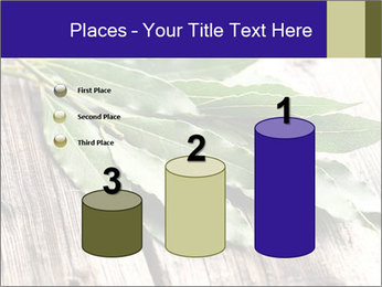 Aromatic Herb PowerPoint Template - Slide 65