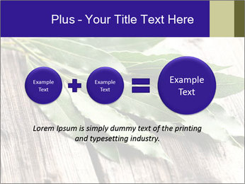Aromatic Herb PowerPoint Template - Slide 75