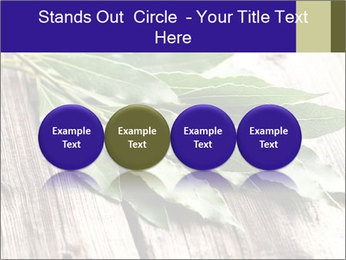 Aromatic Herb PowerPoint Template - Slide 76