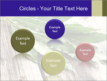 Aromatic Herb PowerPoint Template - Slide 77