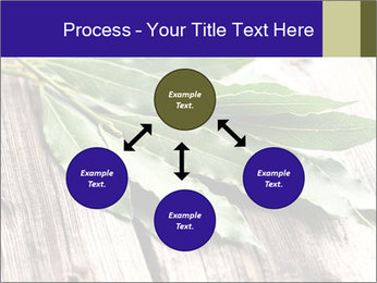 Aromatic Herb PowerPoint Template - Slide 91