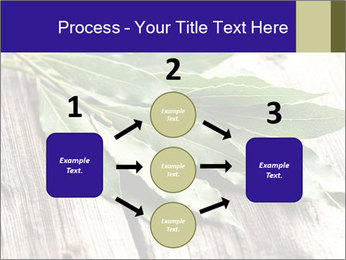 Aromatic Herb PowerPoint Template - Slide 92